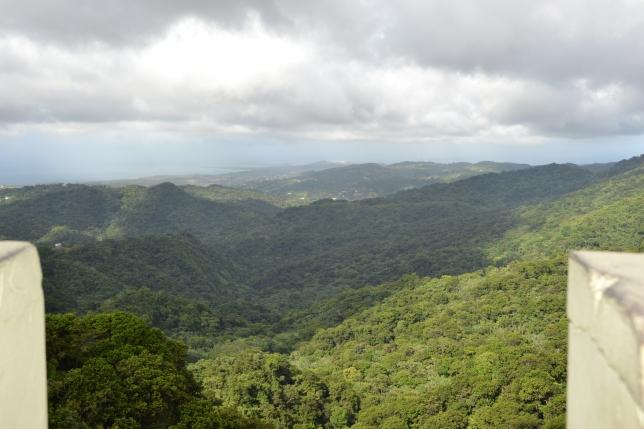 Canyon of the Río de le Mina from Yocahú Tower (Nikon)