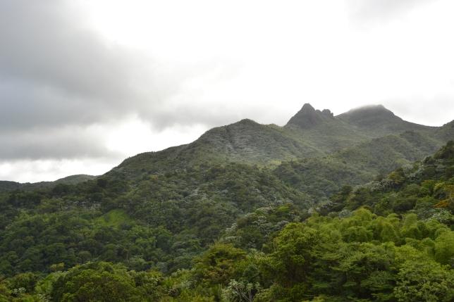 El Cacique and Pico de Yunque from Yocahú Tower