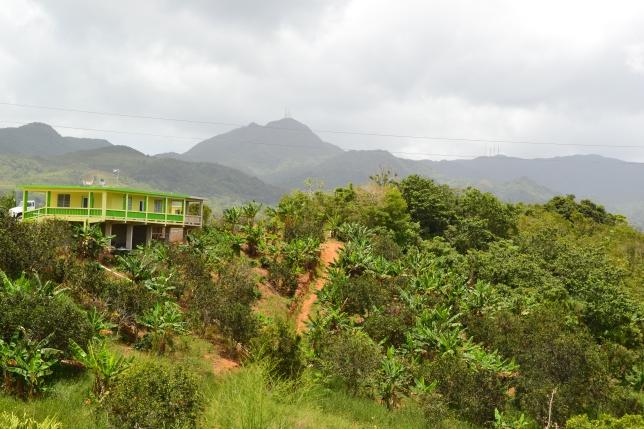 Cerro la Punta from La Pica