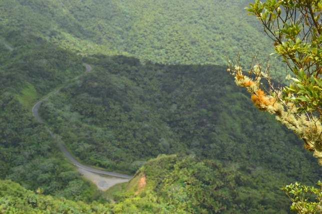 The base of the access road, from Cerro la Punta