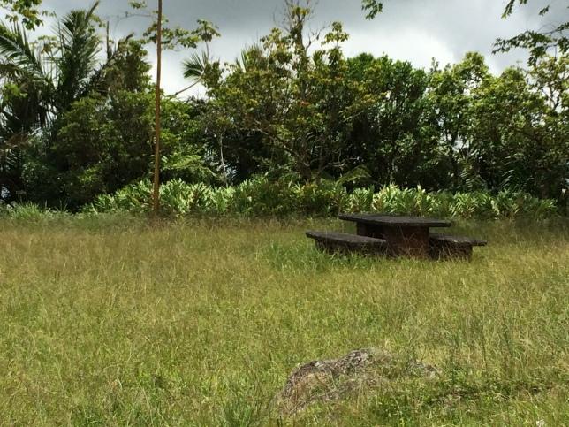 Abandoned picnic table