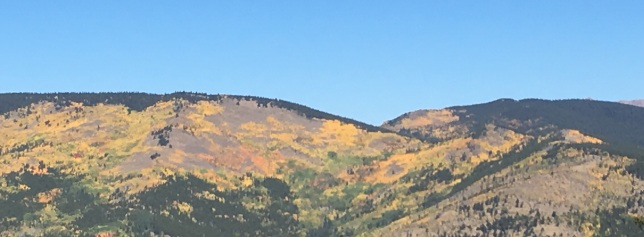 Lovely hillside, bad camera